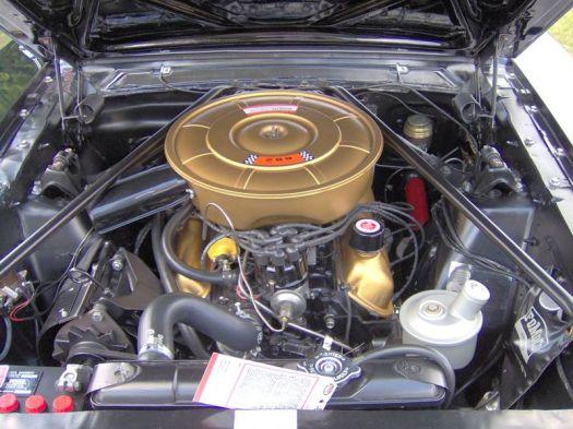Mustang 289