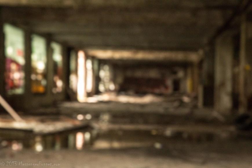 packard blur