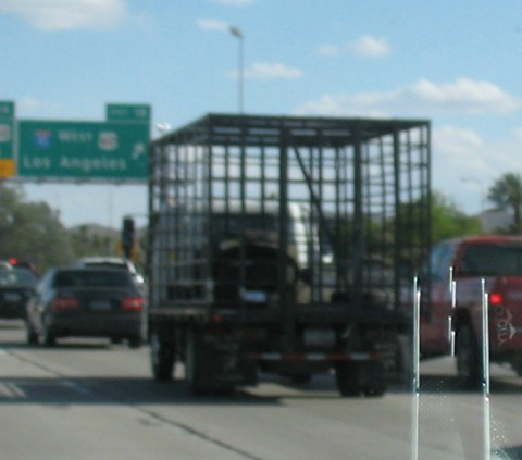 Cage truck