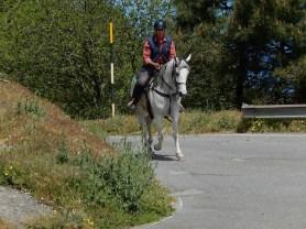 Scalata Dinnammare 2017 - Passaggi - 156