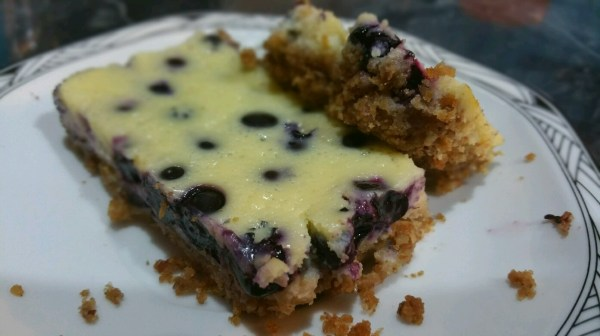 Blueberry cheesecake bars - Messin' with Perfection