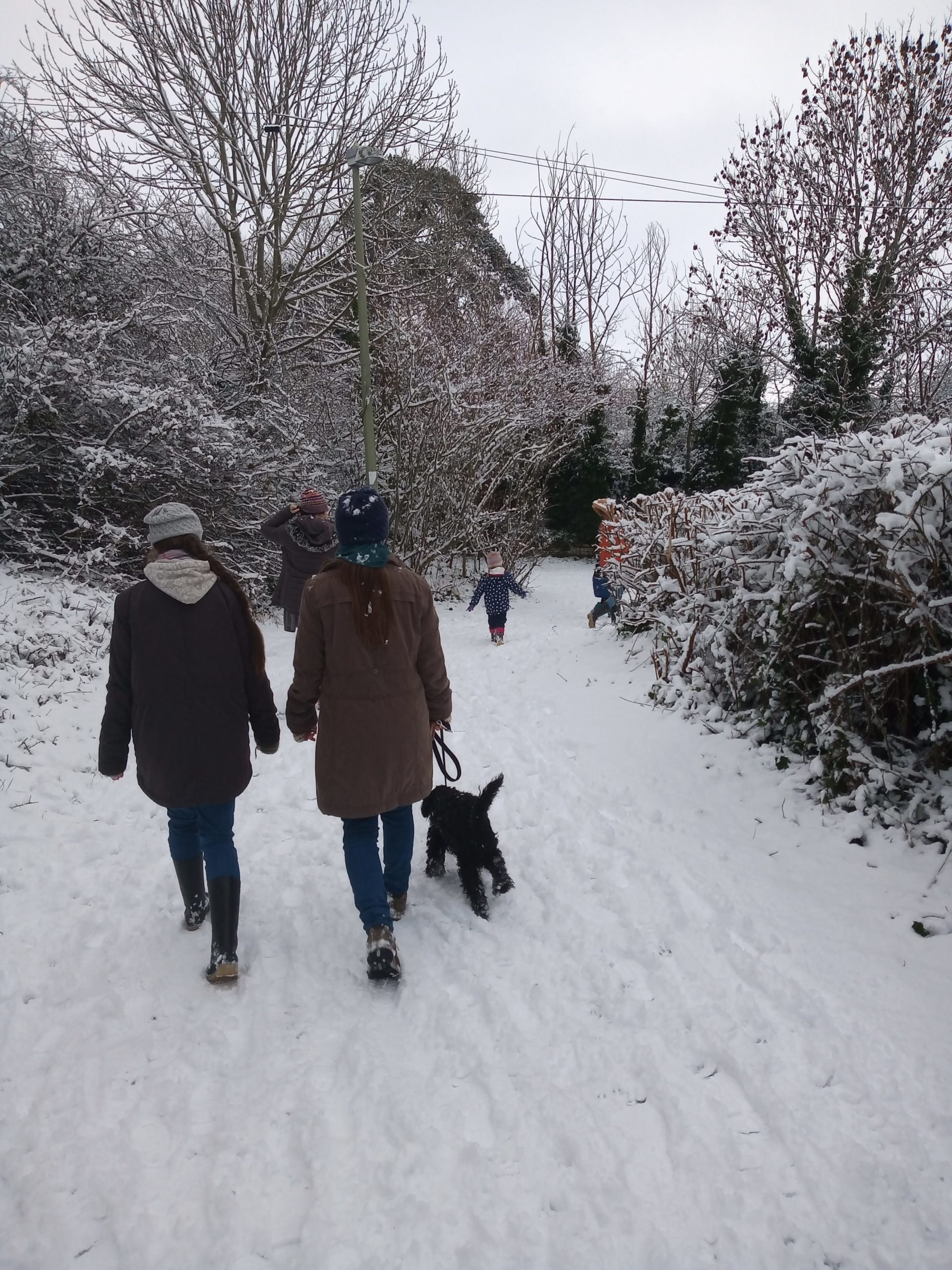 children walking dog in snow