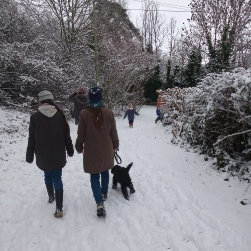 children walking dog in snow