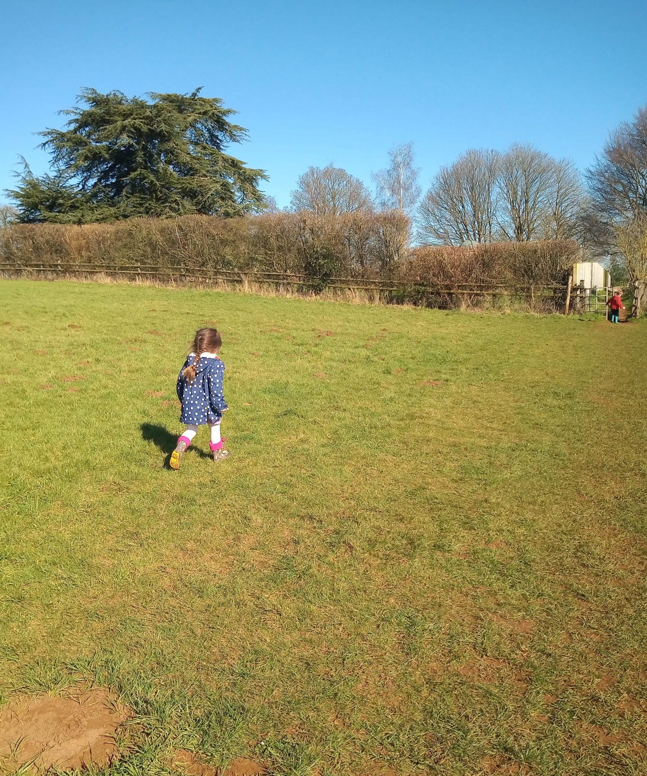 Little girl walking in field