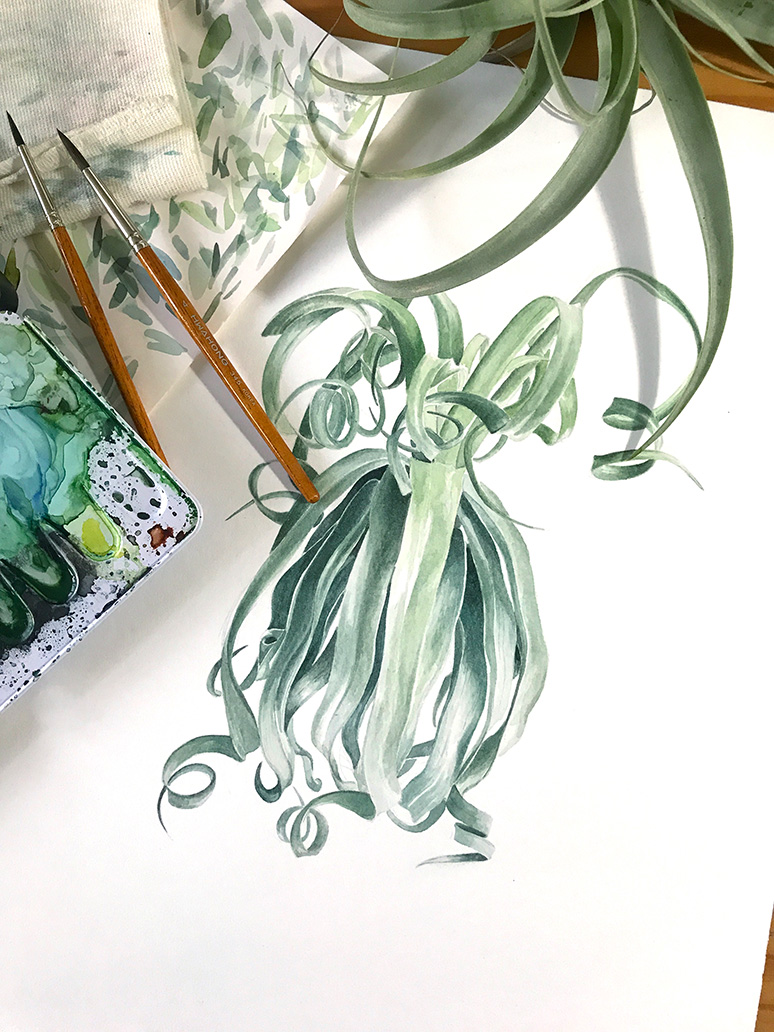 MessyMsxi_botanical_watercolour3