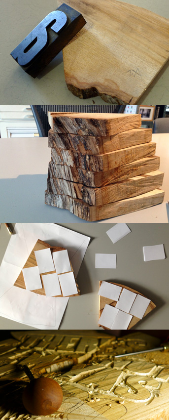 pushing_up_daisy_me1