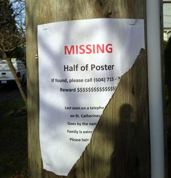 missing_half_poster