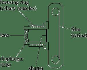 PPLATO   FLAP   PHYS 64: Optical instruments