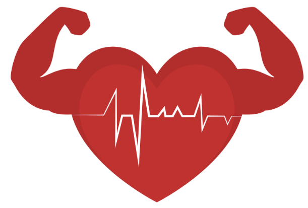 Fats that fuel your heart – Omega 3, 6 and 9
