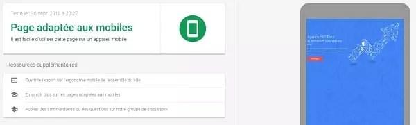 résultat de Google Mobile Friendly Test