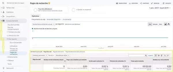 Une capture d'écran des pages de recherche dans Google Analytics