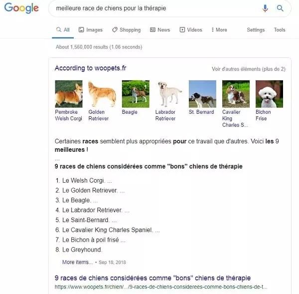 Marketing de SEO pour les meilleurs races de chien pour la thérapie