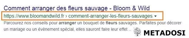 Exemple d'URL pour le SEO on page