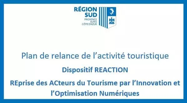 Dispositif REACTION région SUD