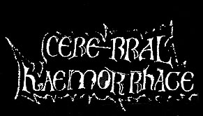 Image result for cerebral hemorrhage