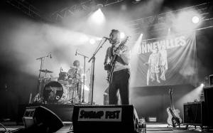 Swamp Fest 2018 - The Bonnevilles
