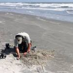 The best tips when using Beach metal detector review