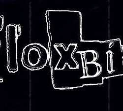Floxbin estrenan tema