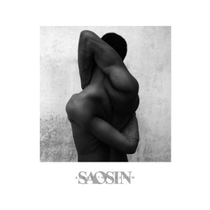 SAOSIN <br/> Along the Shadow