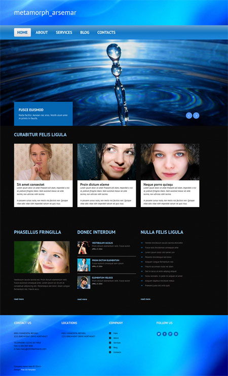 Website templates free
