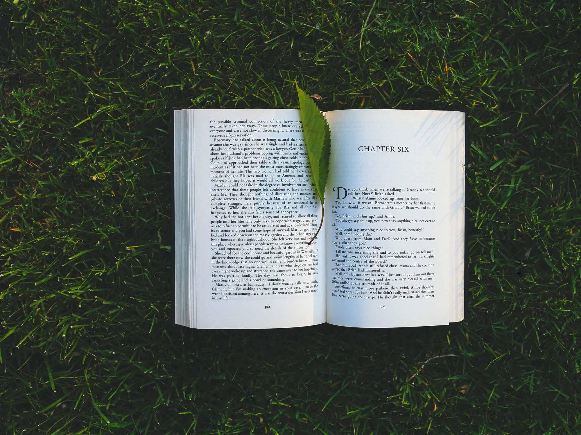 Top 5 des livres pour commencer le développement personnel