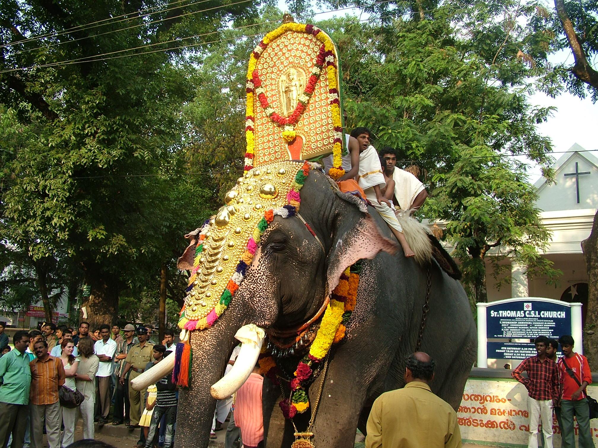 פיל מקושט בפסטיבל פילים בקולום