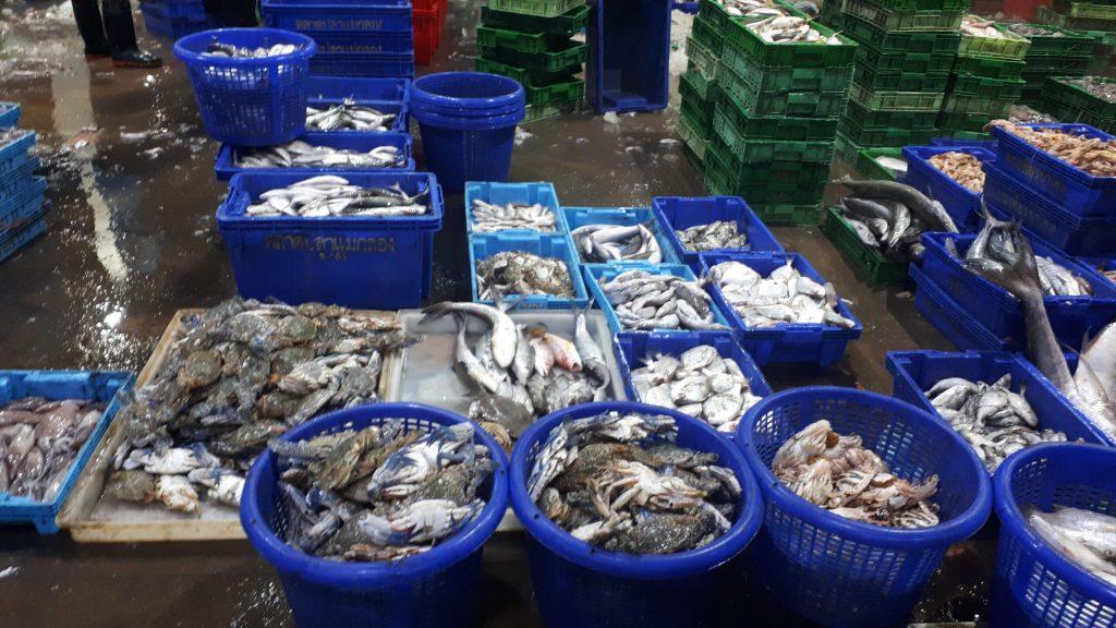 Mae Klong Fish Market