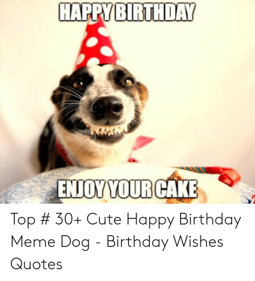 Top 30 Cute Happy Birthday Meme Dog Birthday Wishes Quotes Metee T Shirt