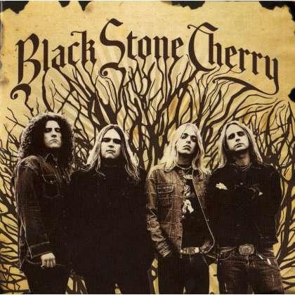 Black Stone Cherry - Black Stone Cherry cover