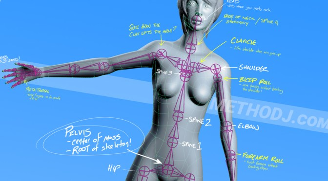 how to rig in maya: joints & skinning