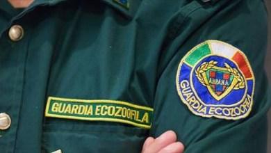 Photo of Al via il reclutamento della Guardie Ecozoofile dell'associazione E.R.A.
