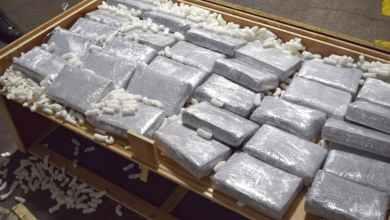 Photo of Sequestrati in pochi giorni 1.300 kg di cocaina al Porto di Gioia Tauro