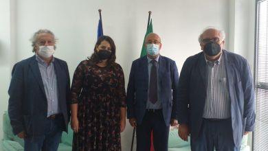 Photo of Dalila Nesci: «Collaboriamo con i responsabili dei patti territoriali»