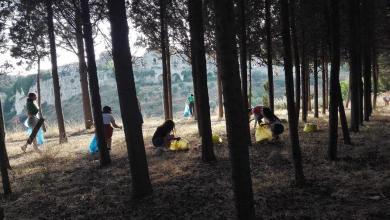 Photo of Gerace: la consulta giovanile ripulisce la Pineta dei Cinque Martiri