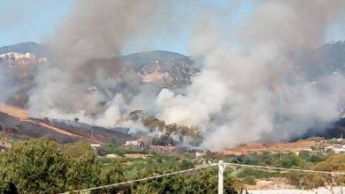 """Photo of """"Territori della Metrocity devastati dalle fiamme. La Regione dichiari lo stato d'emergenza"""""""
