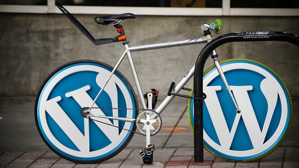 Why Choose WordPress To Boost Your Startup!