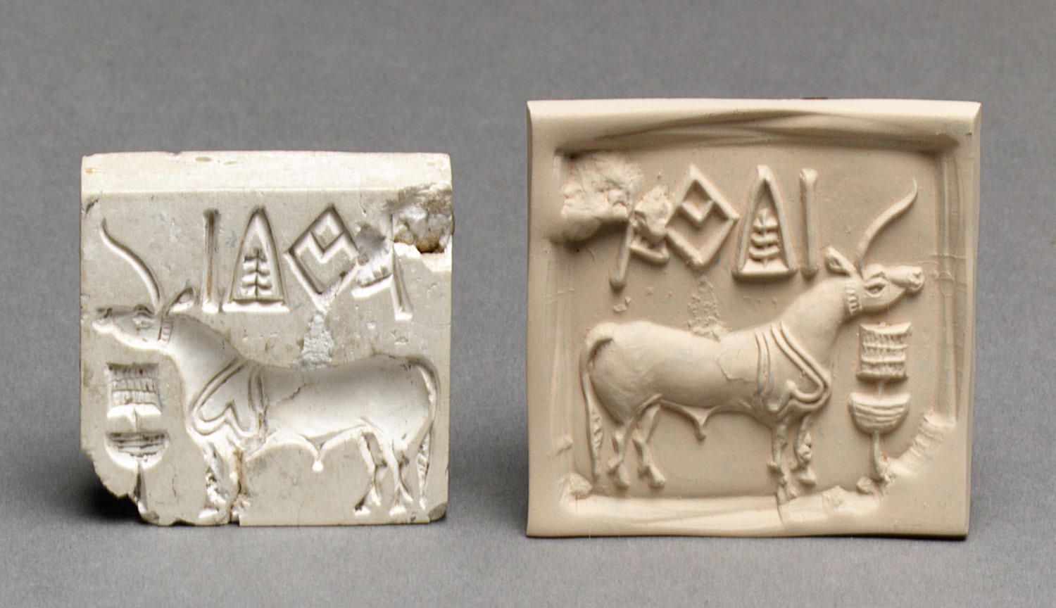 Stamp Seal And A Modern Impression Unicorn Or Bull And