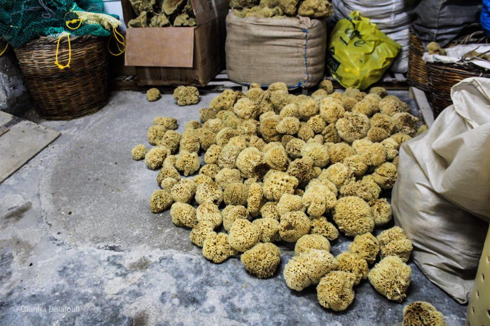 k;alymnos Φυσικά σφουγγάρια θαλάσσης Natürliche Seeschwämme Natural sea sponges