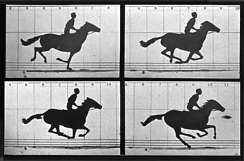 Muybridge's photos of Leland Stanford's horse, Occident, showing the horse with all four hooves off the ground