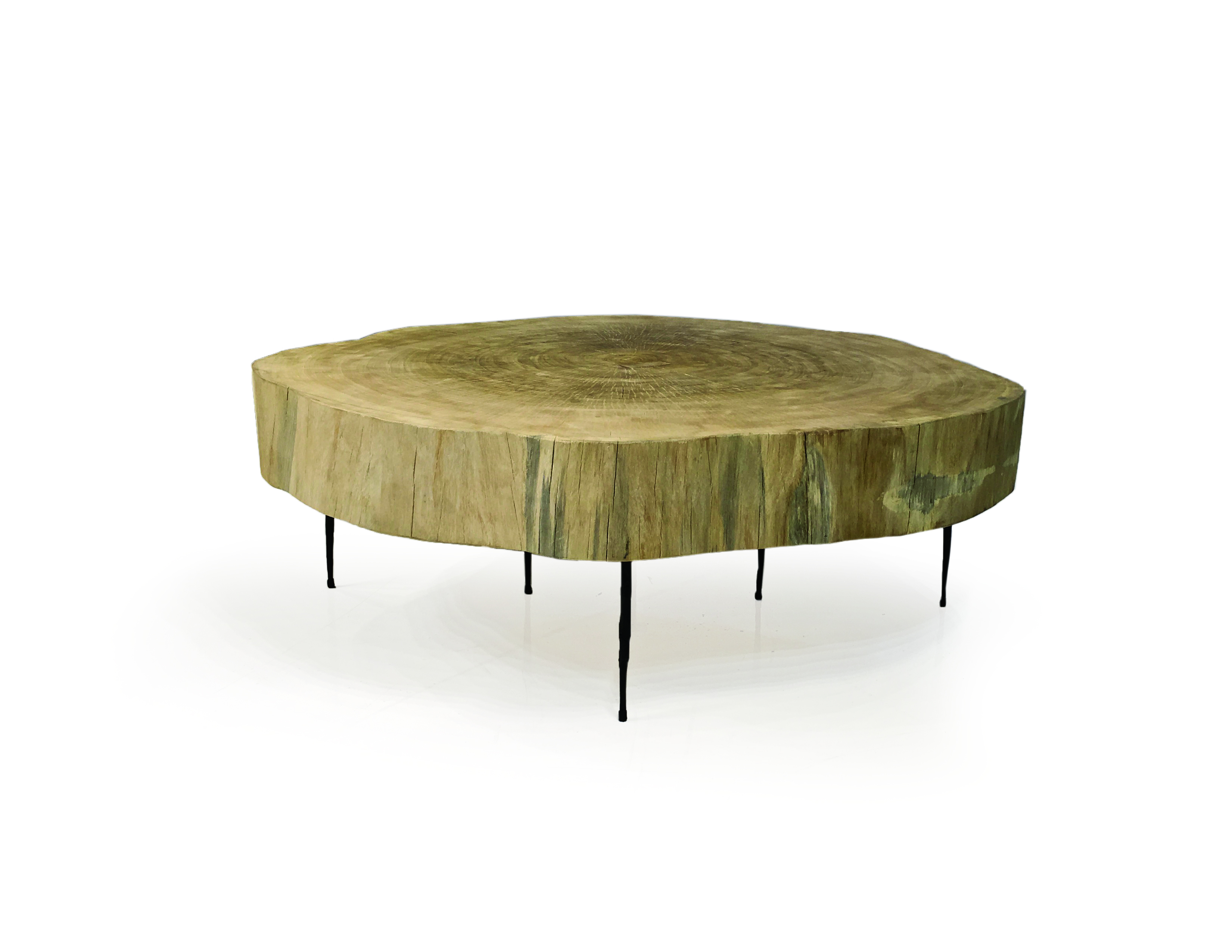time large live edge round coffee table sapelle sliced trunk