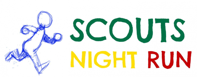 banner_scouts_night