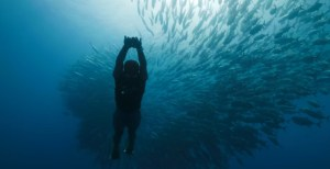 Netflix Original Home Game EP answers questions about freediving in the Philippines and his thoughts on the series