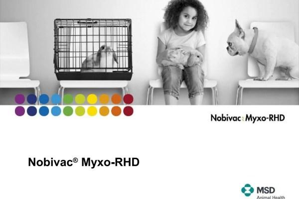 očkování králíka je stejně důležité jako vakcinace dětí