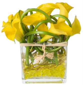 Calla Lilies In Glass Cube