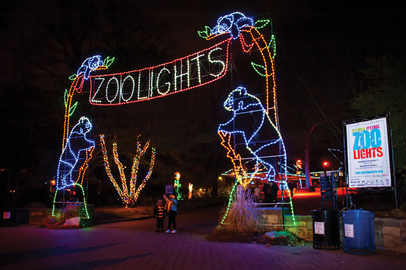 Zoo Lights Dc Review