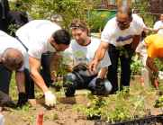 Angel Pagan RA Dickey Jerry Manuel planting flowers