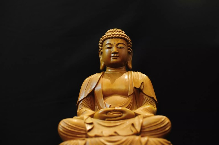 The buddha's Teachings kindness
