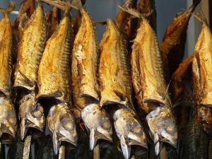 Norwegian fish in Nigeria
