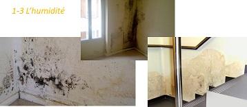 Humidité dans les appartements d'un immeuble