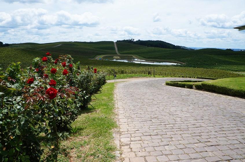 Flores da Cunha   Vinícola Luiz Argenta